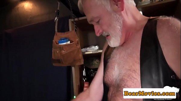 Bearded bear analfucked by silver wolf